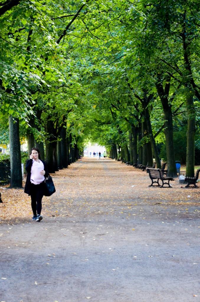 Volkspark Humboldthain Berlijn-9647