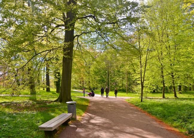 Park Sanssouci Potsdam-20