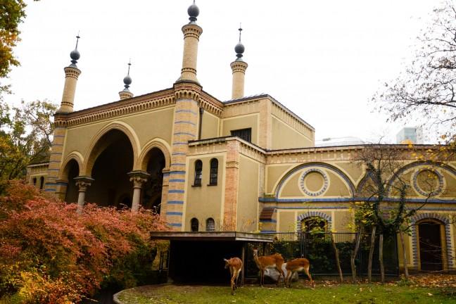 Dierentuin Berlijn - Zoologischer Garten-74