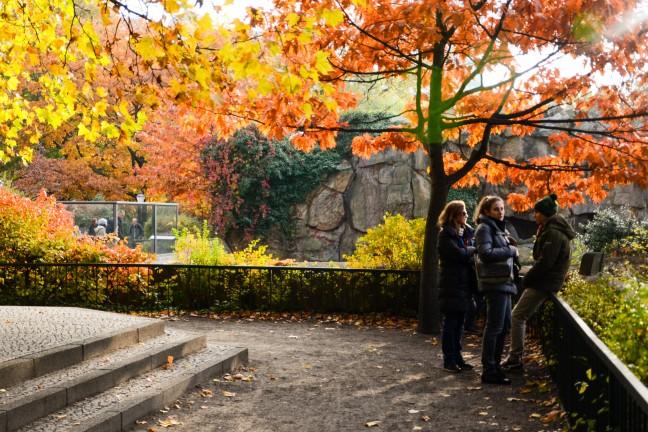 Dierentuin Berlijn - Zoologischer Garten-99