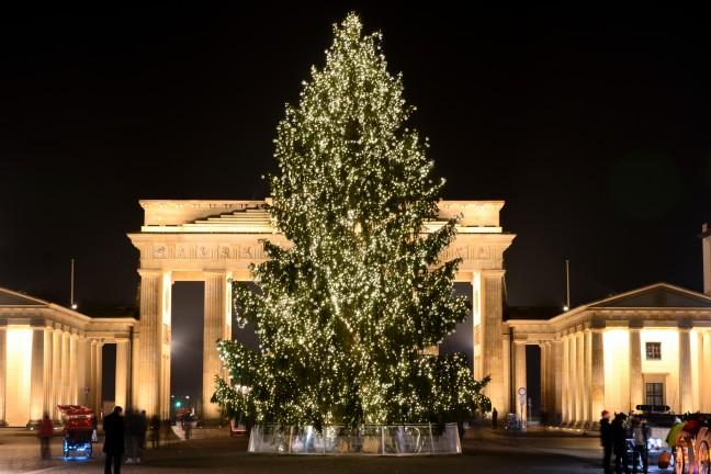 2015-WattedoeninBerlijn - Brandenburger Tor Kerstboom-1