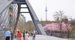 Sakurabloesem in Berlijn – Lentepracht aan de Mauerweg