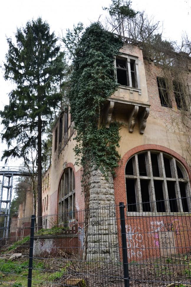 2016-Baumkronenpfad_Beelitz_-40