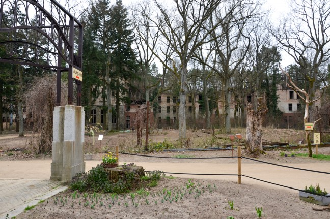 2016-Baumkronenpfad_Beelitz_-6