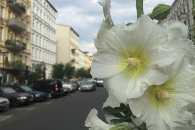 Berlijn-in-plaatjes-18-119