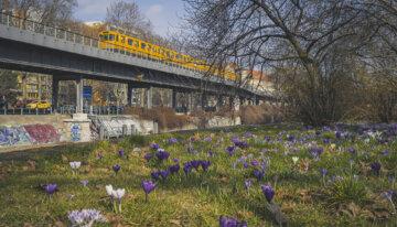 Berlijn in Plaatjes #38 – Maart 2021