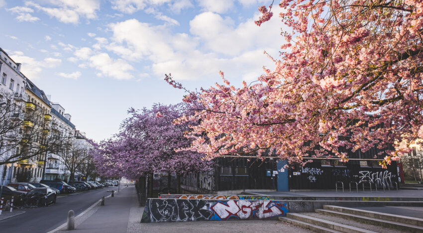 Berlijn in Plaatjes #39 – April 2021